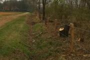 Houten afasteringen geplaatst door Passie voor Groen